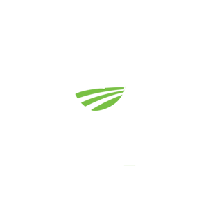 Dig Deep Home Inspections, LLC